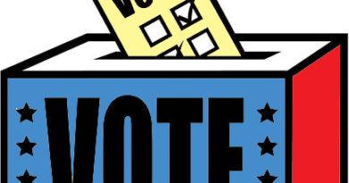 ballot-box-graphic